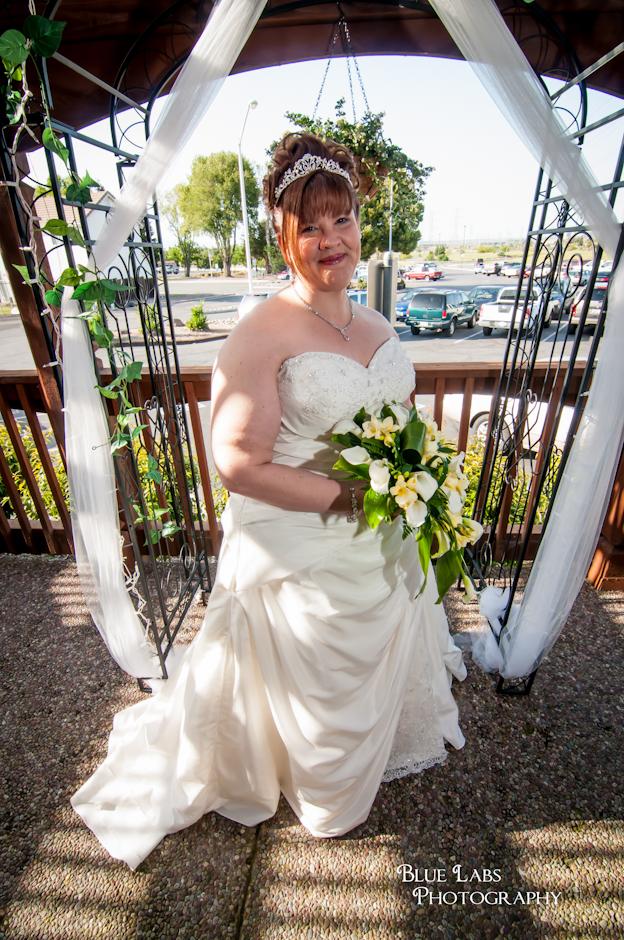 Concord California Wedding | Dark Ivory Soft A-line Wedding Dress ...