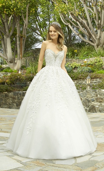 82da24d0dc4 Ball Gown vs. A-line Wedding Dresses